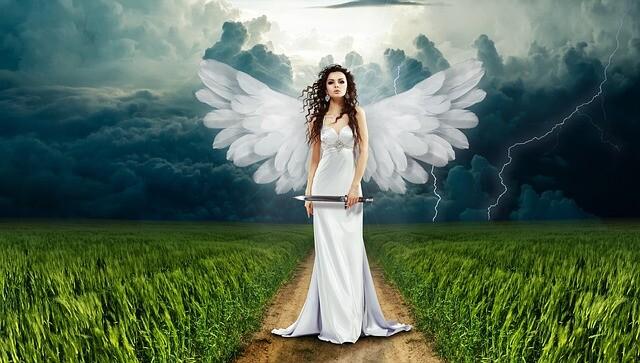 ヒトヒトの実天使
